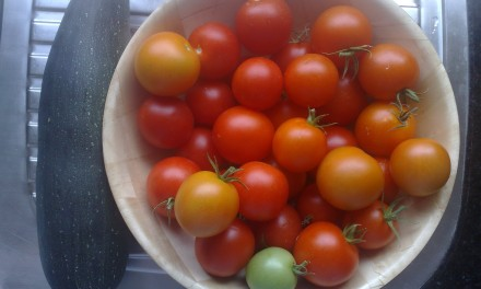 Homegrown Tomatoes and Courgette