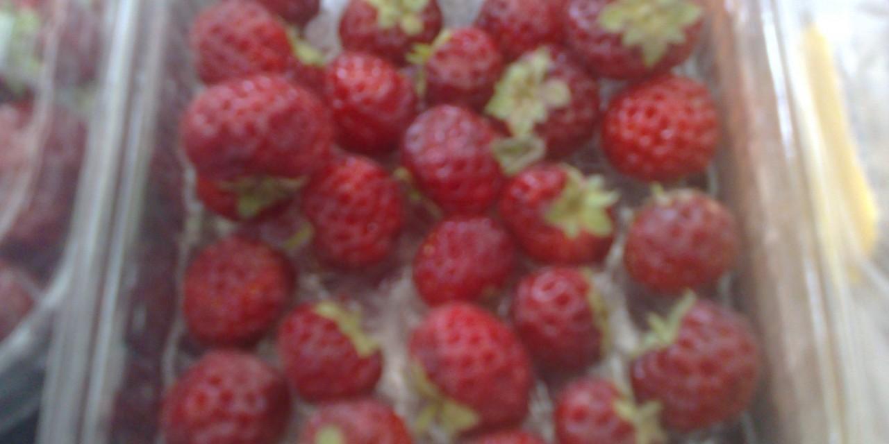 Frambeien  (Raspberry+Strawberry)