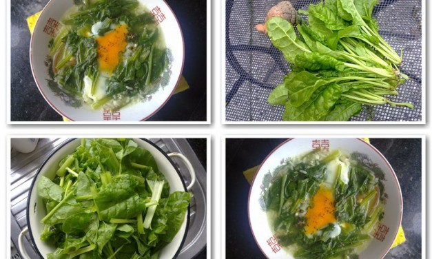 Quick Spinach with Egg Soup