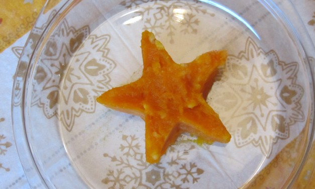 Kabocha Star  (Pumpkin & Cheese Mash)