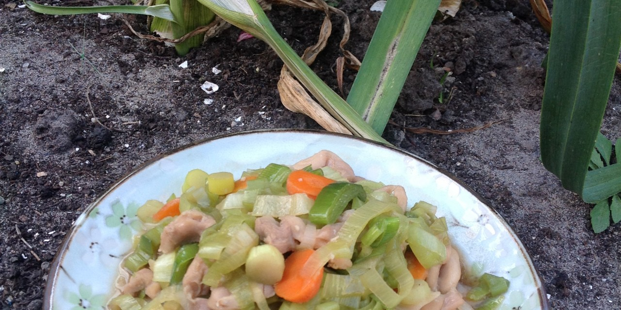 Braised Leeks with Chicken & Carrots