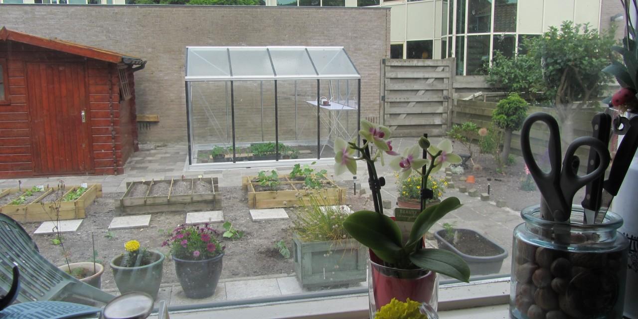 Garden Makeover & Vegetable Patch 2012